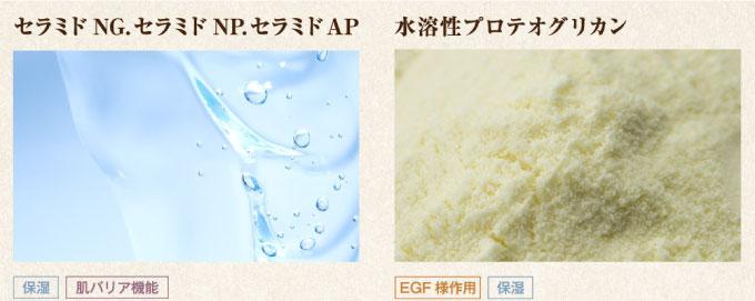 セラミドNG、セラミドNP、セラミドAP「保湿・肌バリア機能」水溶性プロテオグリカン「EGF様作用・保湿」