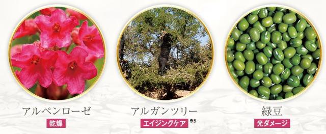 アルペンローゼ・アルガンツリー・緑豆