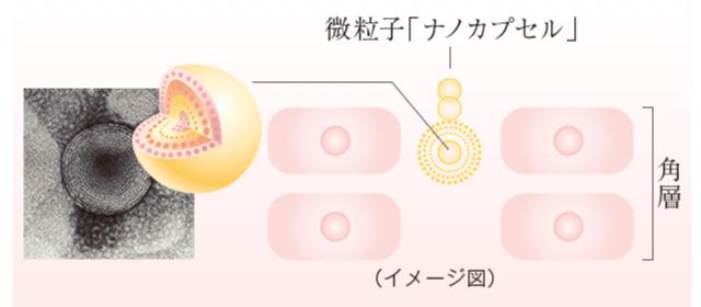 微粒子「ナノカプセル」と角質層の浸透イメージ