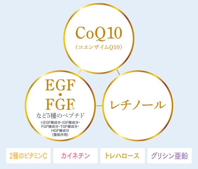 コエンザイムQ10、EGF・FGF、レチノール
